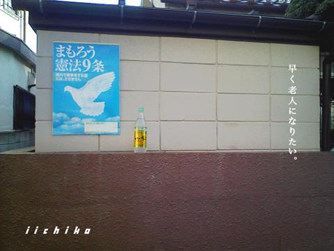 0228_08.jpg