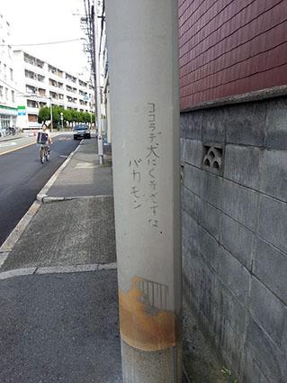 0916_031.jpg