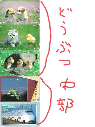 0507_16.jpg